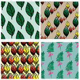 Seamless pattern collection with leaves and branches Royalty Free Stock Images