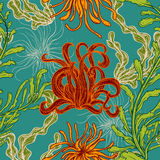 Seamless pattern with collection of marine plants, leaves and seaweed. Retro set of colorful hand drawn marine flora. Vector illus Royalty Free Stock Photography