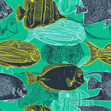 Seamless pattern with collection of tropical fish.Vintage set of hand drawn marine fauna. Royalty Free Stock Image