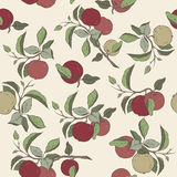 Seamless pattern with color apple fruit and leaves sketch. Stock Image