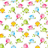 Seamless pattern with color birds Stock Image