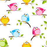 Seamless pattern with color birds Stock Photos