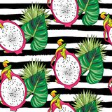 Seamless pattern color half of dragon fruit on black strips. Vector hand drawn abstract tropical seamless pattern of half exotic fruit pitahaya on black strips stock image