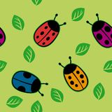 Seamless pattern with color ladybirds Stock Images