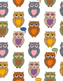 Seamless Pattern with Color Owls Stock Image