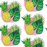 Seamless pattern color pineapple and tropical leaves royalty free stock photo