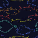 Seamless pattern of color sea fish on a black background. Vector doodle. Seamless pattern of color sea fish on a black background. Perch, cod, scomber, mackerel Royalty Free Stock Photos