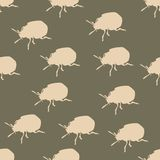 Seamless pattern with colorado beetle. On brown Stock Photography