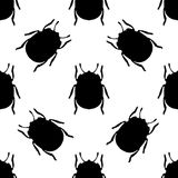 Seamless pattern with colorado potato beetle. Leptinotarsa decemlineata.   colorado beetle.  hand-drawn colorado beetle Stock Photos