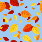 Seamless pattern with colored autumn leaves. Stock Photos