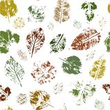 Seamless pattern of colored leaves stamps on a white background. Vector. royalty free illustration