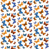 Seamless pattern of colored tropical butterflies isolated on white background