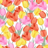 Seamless pattern with colored tulips Royalty Free Stock Photography
