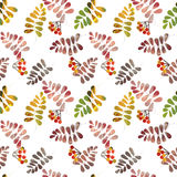 Seamless pattern with colorful autumn leaves and berry on white Stock Photos