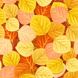 Seamless pattern with colorful autumn leaves. Vector illustration. Vector seamless pattern with autumn aspen colorful leaves Royalty Free Stock Photography