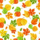 Seamless pattern with colorful autumn leaves. Vector illustration. Stock Photo