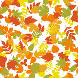 Seamless pattern with colorful autumn leaves on white background. Cute background. Vector illustration Vector Illustration