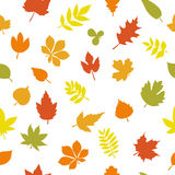 Seamless pattern with colorful autumn leaves on white background. Vector illustration Stock Illustration
