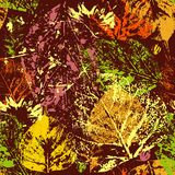 Seamless pattern with colorful autumnal leaves in grunge style Royalty Free Stock Images