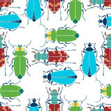 Seamless pattern with colorful beetles. Bright  hand drawn. Vector pattern with multi-colored beetles Royalty Free Stock Photo