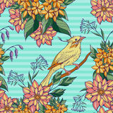 Seamless pattern of colorful bird sitting Stock Images