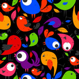 Seamless pattern with colorful birds Stock Image