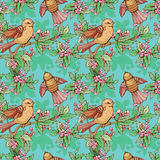 Seamless pattern with colorful birds and blooming summer flowers Stock Images