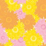 Seamless pattern colorful blooming gerbera flower for textile Stock Photo