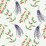 Seamless pattern with colorful branches camu camu, goji and acai Royalty Free Stock Image