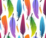Seamless pattern with colorful different feathers on white background. Vector texture for wrappers, wallpaper and your design Royalty Free Stock Photography