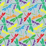 Seamless pattern with colorful dragonflies on gray background. Ideal for textiles and wrapping paper Royalty Free Stock Photo