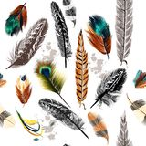 Seamless pattern with colorful and engraved feathers Stock Photo