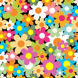 Seamless pattern. Colorful flower background. Stock Image