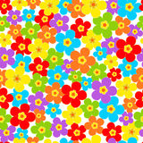 Seamless, pattern  of colorful flower Royalty Free Stock Photos