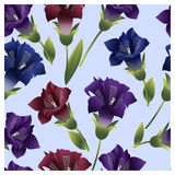 Seamless pattern with colorful flowers bells. Vector illustration Royalty Free Stock Images