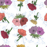 Seamless pattern with colorful flowers. Floral background.illustration with anemone flowers royalty free illustration