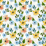 Seamless pattern with colorful flowers Royalty Free Stock Image