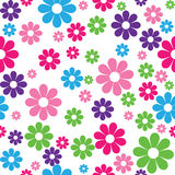 Seamless pattern of colorful flowers Royalty Free Stock Images
