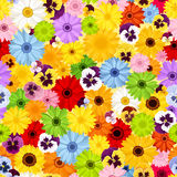 Seamless pattern with colorful flowers. Vector illustration. Stock Photos