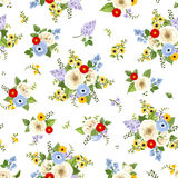 Seamless pattern with colorful flowers. Vector illustration. Stock Images