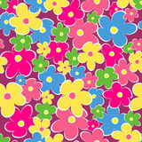 Seamless, pattern  of colorful flowes Stock Photography