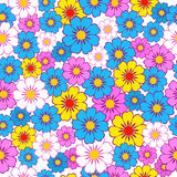 Seamless, pattern  of colorful flowes Royalty Free Stock Images
