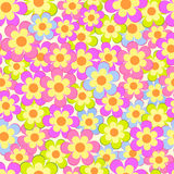 Seamless, pattern  of colorful flowes Stock Photos