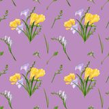 Seamless pattern with colorful freesias and grasses. Fabric wallpaper print texture on dusty pink background. royalty free illustration