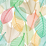 Seamless pattern of colorful leaves Royalty Free Stock Image