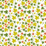 Seamless pattern with colorful maple leaves. On a white background. Autumn leaf fall. Raster clip art Stock Image