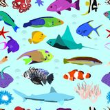 Seamless pattern of colorful marine fishes of sea stars and corals. On light background Royalty Free Stock Photography