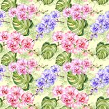 Seamless pattern. Colorful orchid flowers with outlines and large green monstera leaves on light green background. Watercolor painting. Hand drawn illustration vector illustration