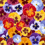 Seamless pattern with colorful pansy flowers. Royalty Free Stock Photos
