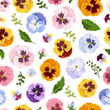 Seamless pattern with colorful pansy flowers. Vector illustration. Royalty Free Stock Photography